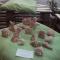 I fischietti son tornati!!! Sono arrivati i fischietti prodotti dai partecipanti al laboratorio tenuto durante il Festival 2014