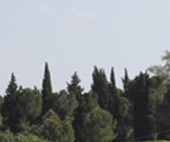 E' online il bando di partecipazione al Festival MUSICA NELLE AIE 2015 di Castel Raniero