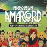 GIOVEDì 25 AGOSTO ROCCA DI FORLIMPOPOLI  ore 21,15 Aspettando il Festival al Cinema  AMARCORD di Federico Fellini