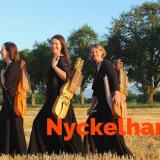 30 Ottobre 2016 Sala Aramini diventa ENTROTERRE FOLK CLUB  e apre i live con Nyckelharpa Resonance Quartet e NYCKELHARPA QUARTET
