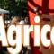 15 Giugno 2018 – L'Orchestrona (da ballo) alla Fiera Agricola del Santerno a IMOLA (BO)